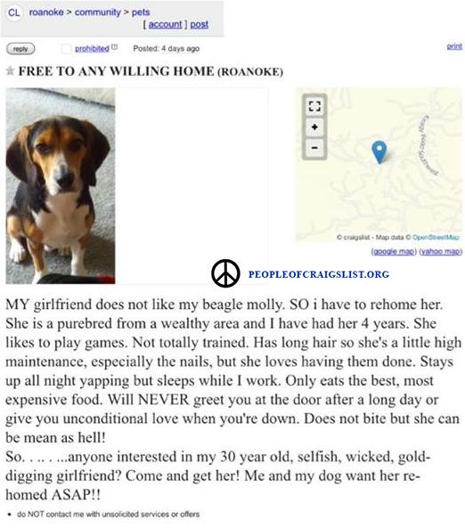 Craigslist Dog to a good home