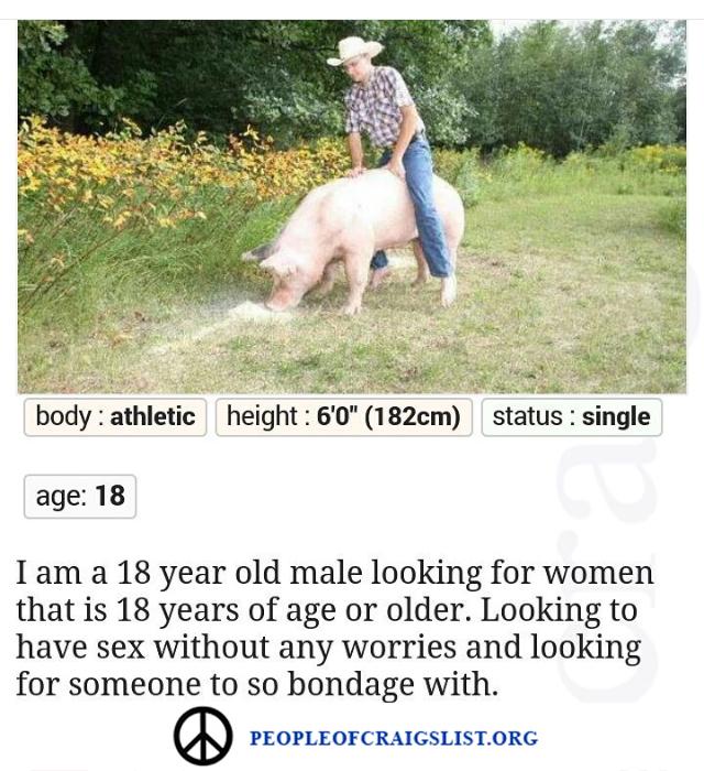 Craigslist Pig Farmer