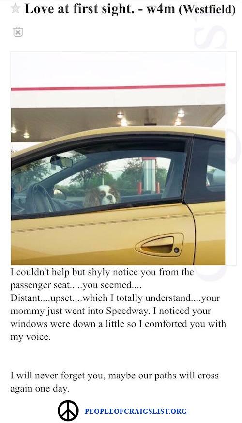 Craigslist puppy love personal ad